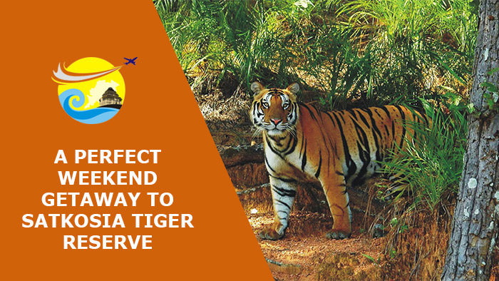 A-Perfect-Weekend-Getaway-to-Satkosia-Tiger-Reserve