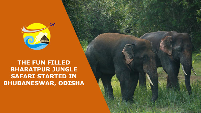The Fun Filled Bharatpur Jungle Safari Started in Bhubaneswar
