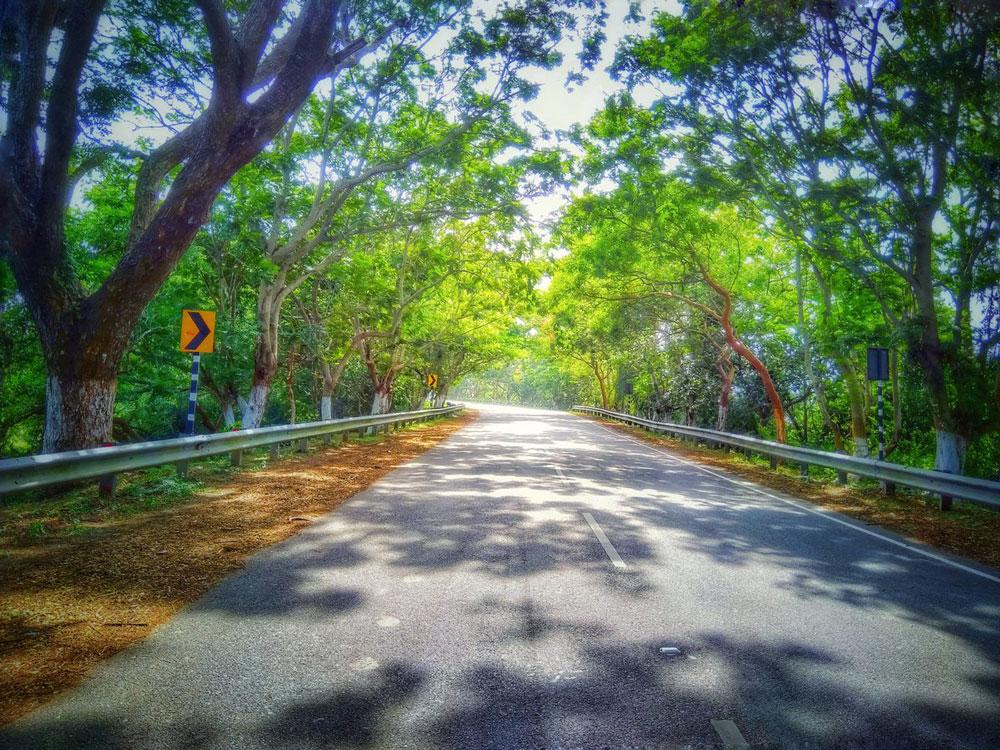 Puri-Konark-Marine-Drive