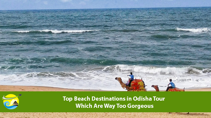 Top-Beach-Destinations-in-Odisha-Tour-Which-Are-Way-Too-Gorgeous