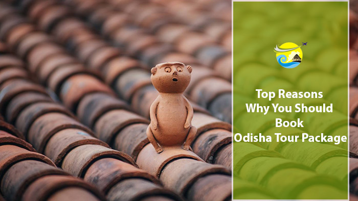 Top-Reasons-Why-You-Should-Book-Odisha-Tour-Package